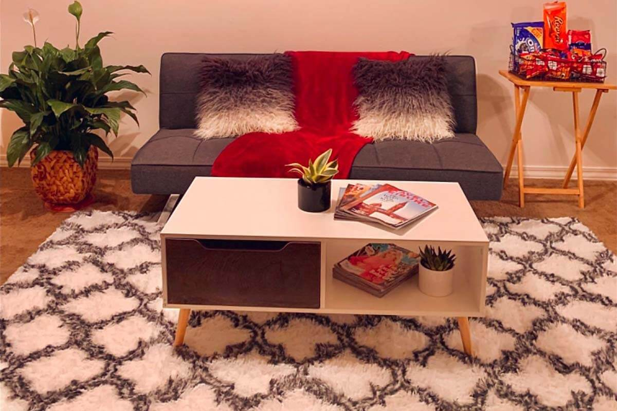 LOCHAS Luxury Velvet Shag Area Rug1