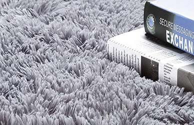 Noahas Luxury Fluffy Ultra-Soft Shag Rug for Living Room